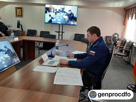 Жители Биробиджана жалуются уже генеральному прокурору РФ на бродячих собак в городе